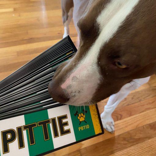 Yes Pittie bumper stickers